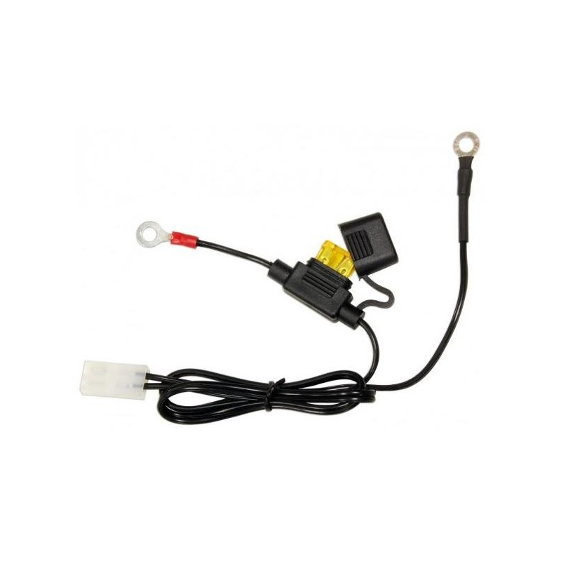 Cable chargeur batterie pour ACCUGARD-900 avec fusible